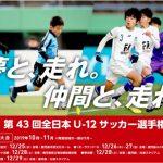 【中央大会】JFA第43回全日本U-12サッカー選手権大会 大阪府大会
